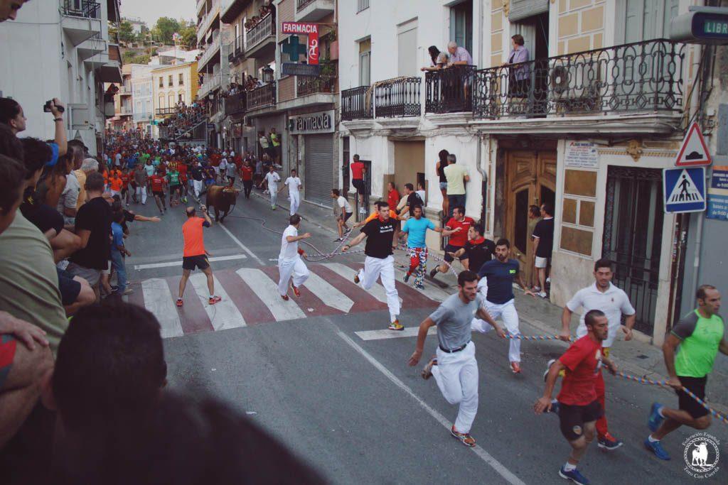 El Torico de la Cuerda de Chiva, Fiesta de Interés Turístico Autonómico