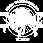 escudo yuncos