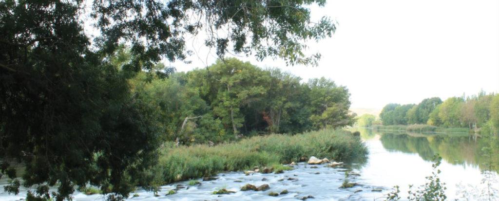 Río Ebro en Lodosa
